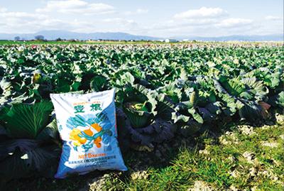 高品質有機肥料「豊根」3