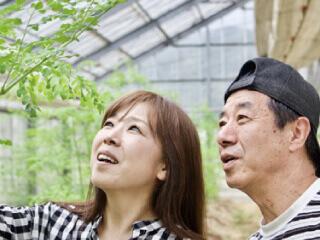 愛のモリンガ園